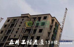 2019年5月东哲中南府工程进度