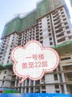 华天珑悦工程进度2020年10月